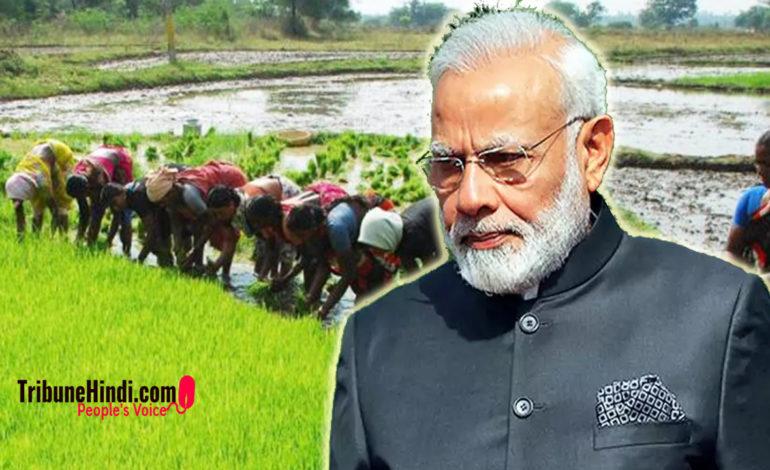 कैसे किसान विरोधी हैं, मोदी सरकार द्वारा लाए गए तीन कृषि अध्यादेश ?