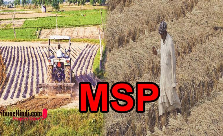 किसानों के लिए क्यों जरूरी है MSP का कानूनी अधिकार